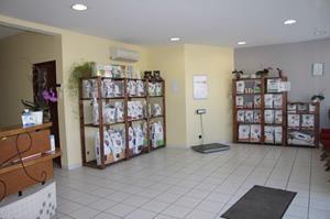 Clinique vétérinaire akkolytes, service de nutrition